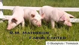 R.M. Matheson Farms Limited
